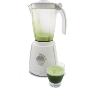 wheatgrass juice liquidizer